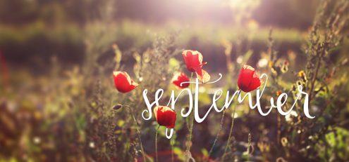september2014_preview