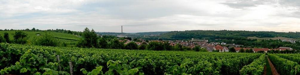 Schwäbischer Albverein | Ortsgruppe Gemmrigheim