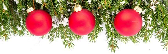 Weihnachtsbilder Tannenzweig.14 Waldweihnacht Am 3 Advent Schwäbischer Albverein Ortsgruppe